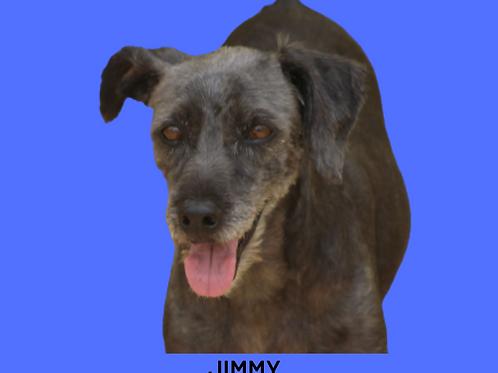 Jimmy-naná