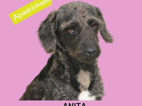 Anita-ipojuca
