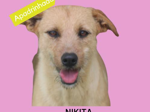 Nikita-caucaia