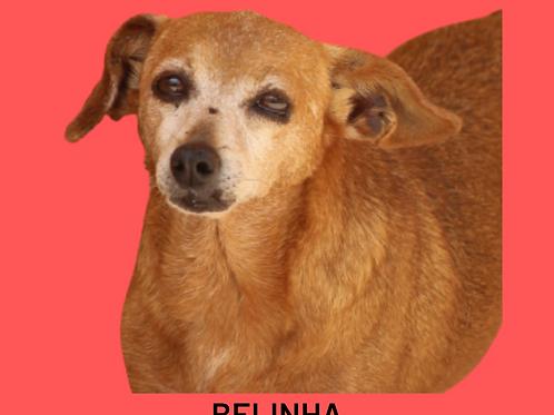 Belinha-300 Anjos
