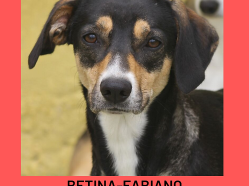 Betina-Fabiano