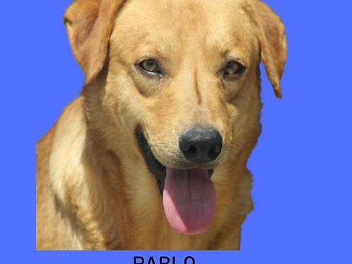 Pablo-Sr. Claudio