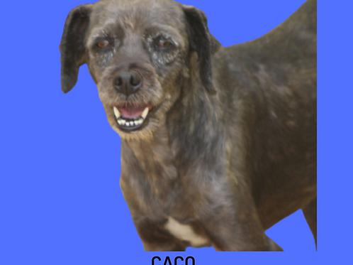 Caco-naná