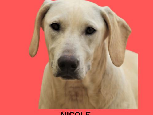 Nicole-bombom