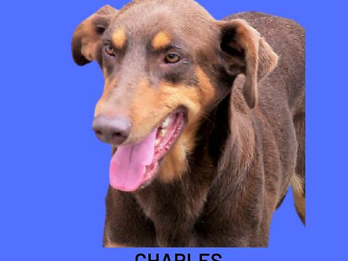 Charles-euridice
