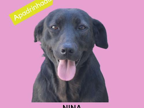 Nina-carapicuiba