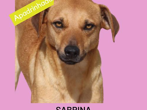 Sabrina-amarula