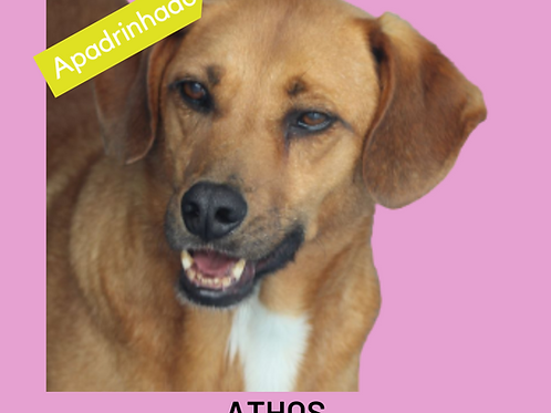 Athos-sandra