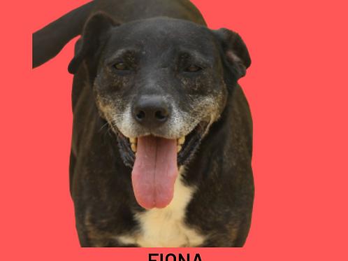 Fiona-Sr.Claudio