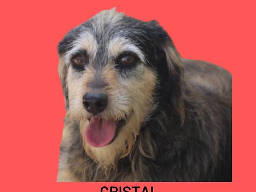 Cristal-esmeralda