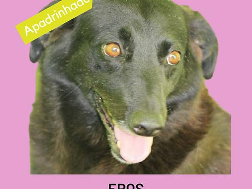 Eros-duka