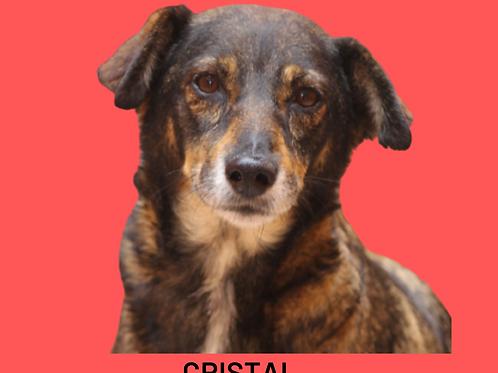 Cristal-300 Anjos