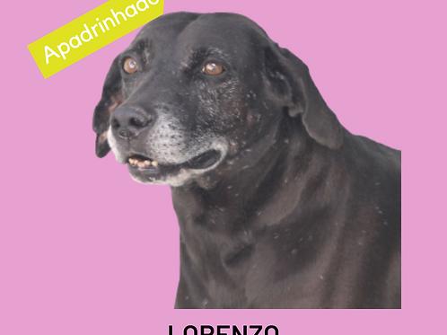 Lorenzo-parelheiros