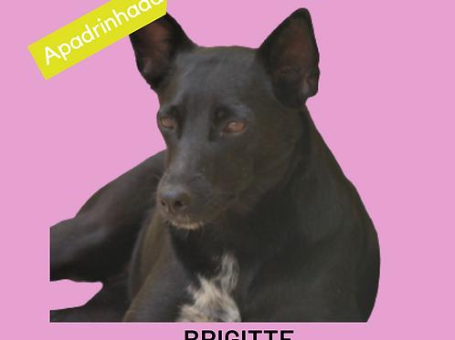 Brigitte-carapicuiba