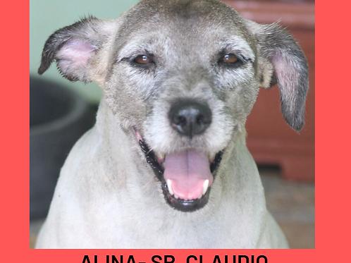 Aline-Sr. Claudio