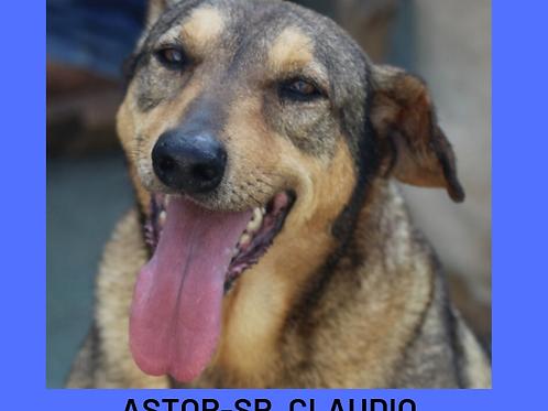 Astor-Sr. Claudio