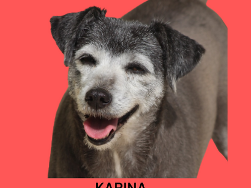 Karina-Sr. Claudio