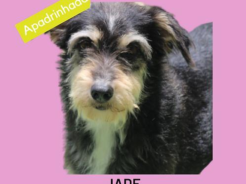 Jade-Inês
