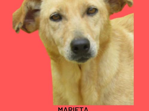 Marieta-madá