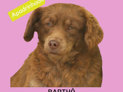 Barthô-embu