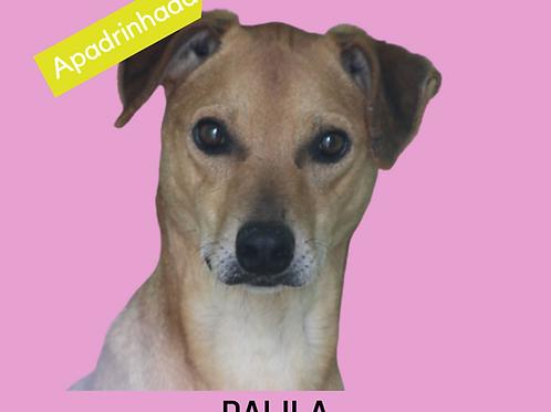 Dalila-Inês
