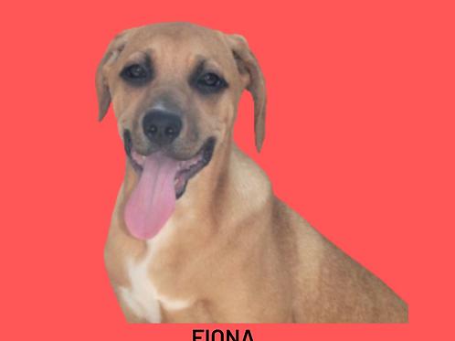 Fiona-sandra