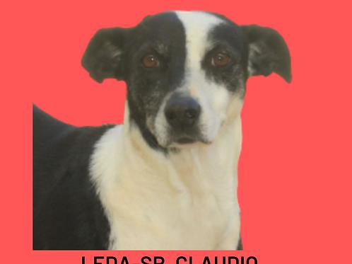 Leda-Sr. Claudio