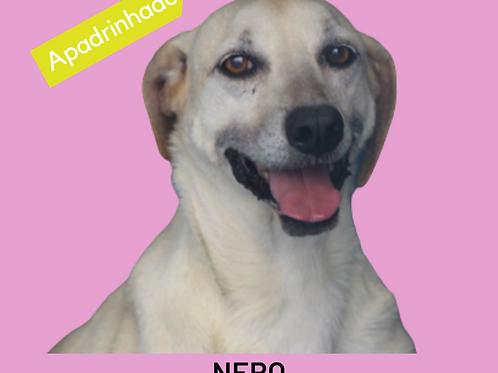 Nero-sandra