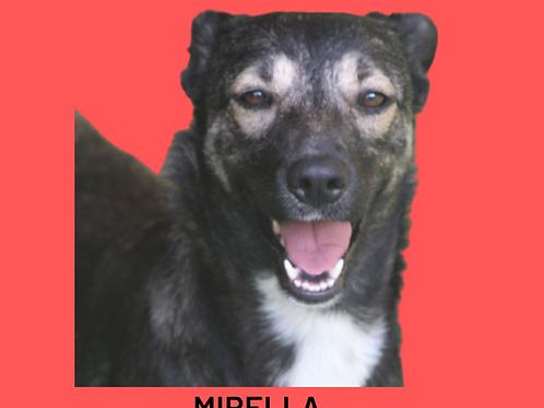 Mirella-nico