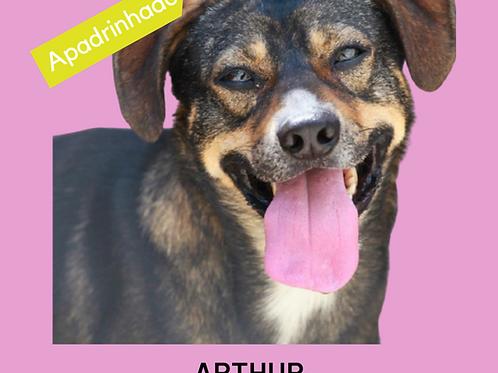 Arthur-parelheiros