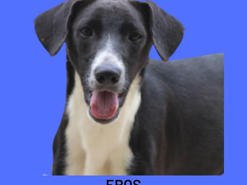 Eros-menina