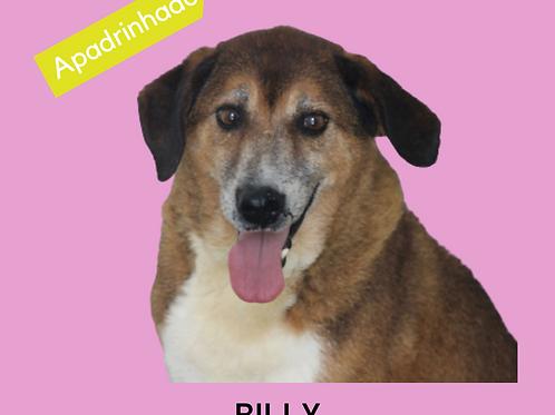 Billy-samantha