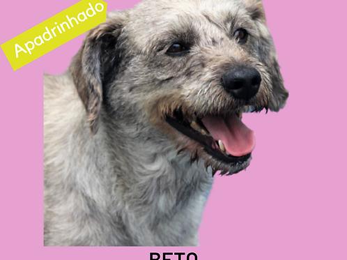 Beto-300 Anjos