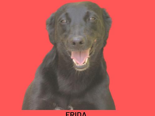 Frida-brigitte