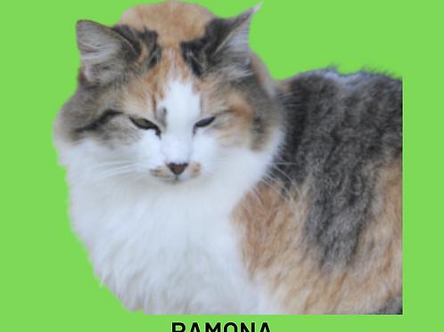 Ramona-gata