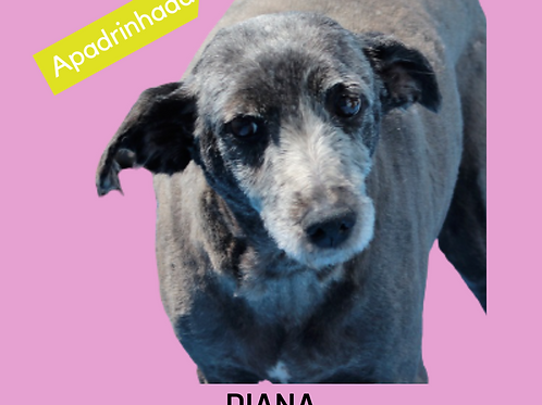 Diana-aurora