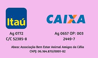 Dados_Bancário2.png