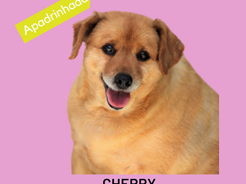 Cherry-rita