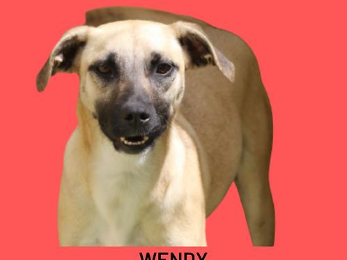 Wendy-caucaia