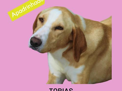 Tobias-pretinha