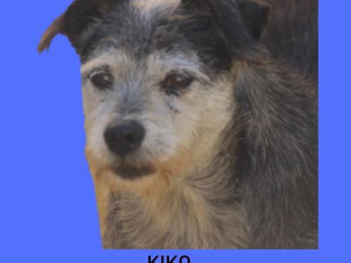 Kiko-Sr. Claudio