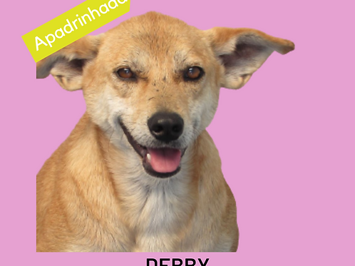 Debby-zoonose