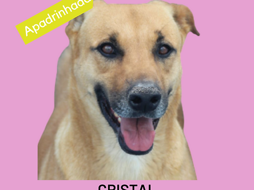 Cristal-sandra
