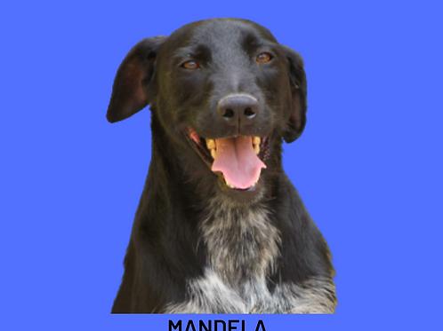 Mandela-brigitte