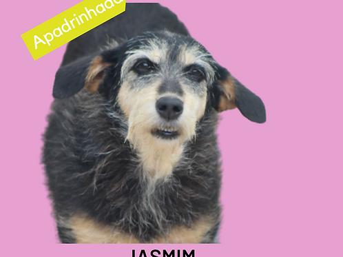 Jasmim-Inês