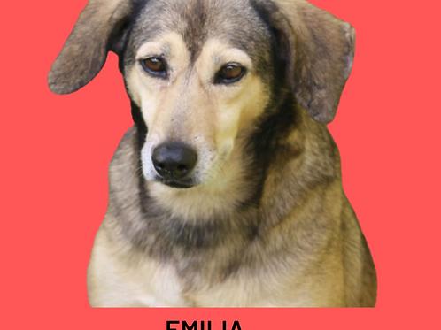 Emilia-300 Anjos