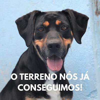O_TERRENO_NÓS_JÁ_CONSEGUIMOS!.png