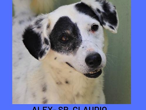 Alex-Sr. Claudio