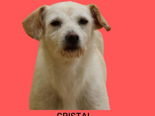 Cristal-embu