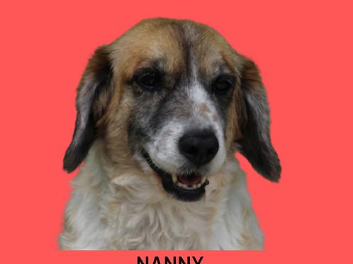 Nanny-Sr. Claudio